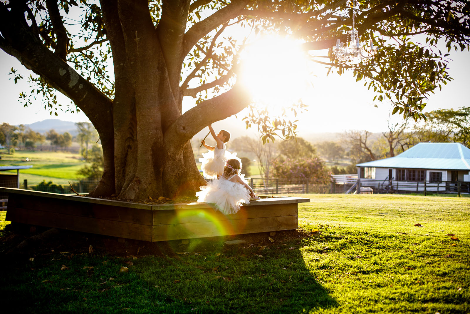 mount_tamborine_wedding_photographer_240